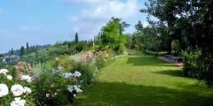 Capanna garden