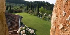 Nandina garden