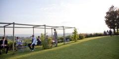 Nandina garden 2