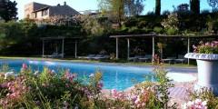 Nandina pool