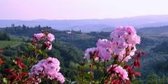 Capanna_panorama